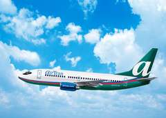AirTran Sued Over Roaches
