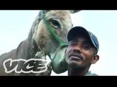 VICE Donkey Sex Documentary