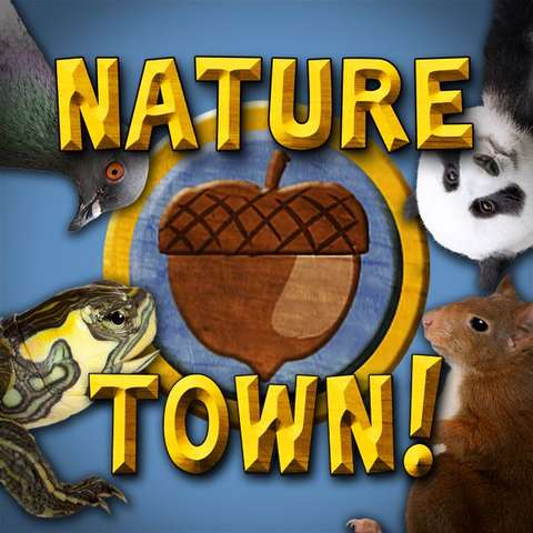Nature Town