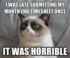 Overdue Time Sheets