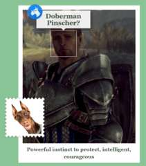 wardenalistair