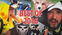 BEST OF COW CHOP • 2016