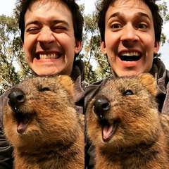 Chris and the Quokka