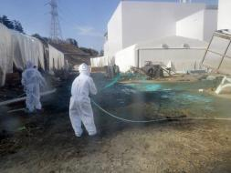 Livevol Options Blog: Op-Ed: Fukushima Nuclear Disaster - The Lies They've Told; 15 Things You Should Know; And How This Could B