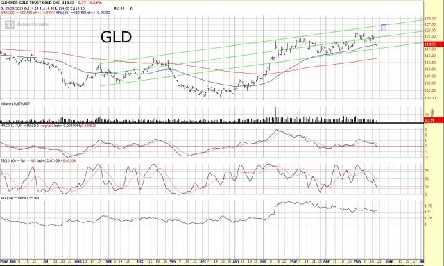 GLD61916.jpg