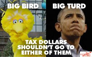 Google Image Result for http://www.commonsenseevaluation.com/wp-content/uploads/2012/10/big_bird_obama.jpg