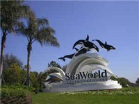 Sea World - Amusement Park in Orlando