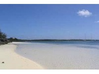Lynard's Cay - Beach in