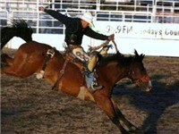 Steamboat Springs Pro Rodeo Series - Bronco Riding
