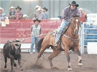 Steamboat Springs Pro Rodeo Series - Calf Roping