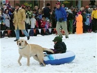 winter Carnival - Steamboat Springs Colorado, dog sled races