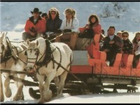 Winter Activities - Sleigh Rides - Tours in Steamboat Springs