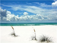 Emerald Coast Properties