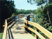 The Audubon Bird Sanctuary on Dauphin Island has a 1,000 ft long walkway to access Lake Gaillard