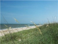 Carolina Beach Properties