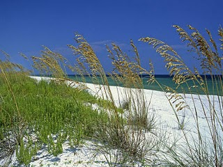 The secret is out! Alabama has some of the most beautiful beaches along the Gulf of Mexico, and we&#39;ve got the perfect place to stay for your Alabama beach vacation!