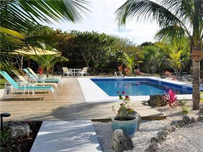 bananaquit pool