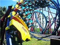 Busch Gardens - Amusement Park in Tampa