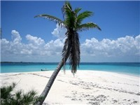 The Pelican Cays - Beach in