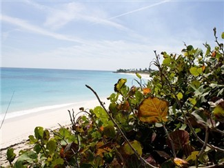 Crystal Clear waters and Sandy white beaches makes Hope Town - Town Beach a gorgeous relaxing getaway for all who visit.