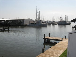 Marina View