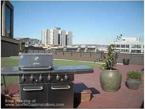 Gas Grills on roof for your use.