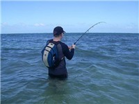 Tyt Lynz Guide Service - St. Maarten Fishing - Fishing in Reteat Estate