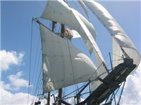 Lord Sheffield Tall Ship Adventures - Tourist Attraction in
