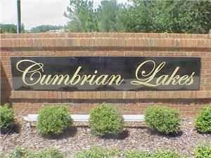 Cumbrian Lakes Properties