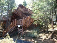 Cabin in Big Bear City