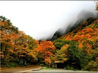 Smugglers Notch Region Properties