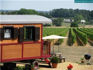 Vineyard Luxury Camping (Glamping and Wine Tasting) Accommodations  