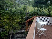 Deck and natural surroundings