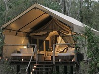 Luxury Tents in Woollamia
