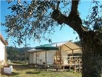 Luxury Tents in Coimbra
