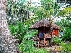 Cabins in Little Corn Island