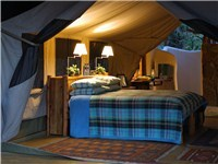 Luxury Tents in Nairobi