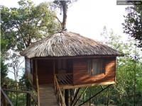 Cabins | Tree Houses | Tents |  in Munnar
