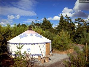 Yurts in Castletown Geoghegan