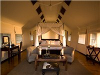 Luxury Tents in Addo Elephant Park