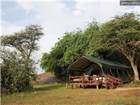 Luxury Tents in Serengeti National Park