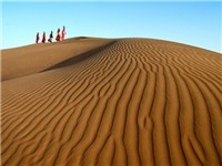 sam-sand-dunes.jpg