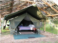 Luxury Tents in Laikipia