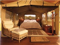 Luxury Tents in Maryvale