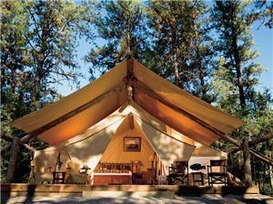 SAFARI TENTS Accommodations  