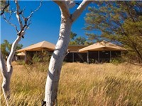 Luxury Tents in Karijini National Park