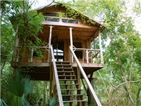 Tree House in Canadys