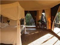Cabins | Tree Houses | Tents |  in Masai Mara
