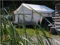 Luxury Tents in Seldovia