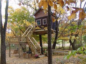 Tree House in Karbers Ridge